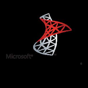 Sql-Server hns servicios
